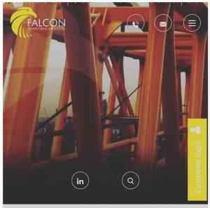 falcon temp